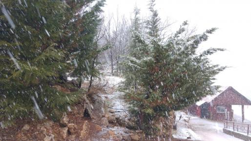 שלג החל לרדת לפנות בוקר בחרמון