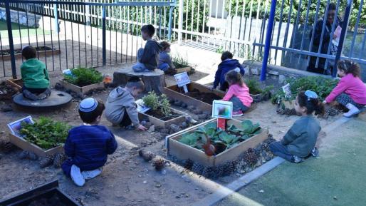 סיור של המשרד לאיכות הסביבה בגני הילדים בעיר השנה יוסמכו 8 גנים ירוקים נוספים