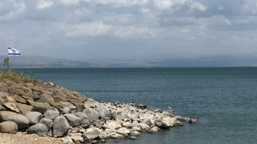 5,000 דונם באזור הבטיחה בכינרת ייאסרו לדייג למשך 60 יום