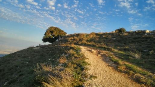 נוף כביר בהר כביר בשומרון