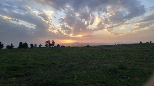 צה״ל תקף בסוריה לאחר נפילת מרגמה ברמת הגולן