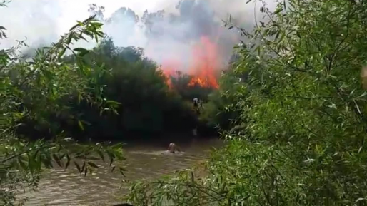 צפו בתיעוד הבלעדי: הדרמה במהלך השריפה בנהר הירדן