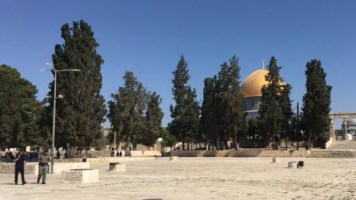 7 יהודים שהשתחוו בהר הבית נעצרו לחקירה