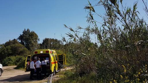בן 30 הוכש על ידי נחש בשטח חקלאי בכפר סבא – נפצע בינוני