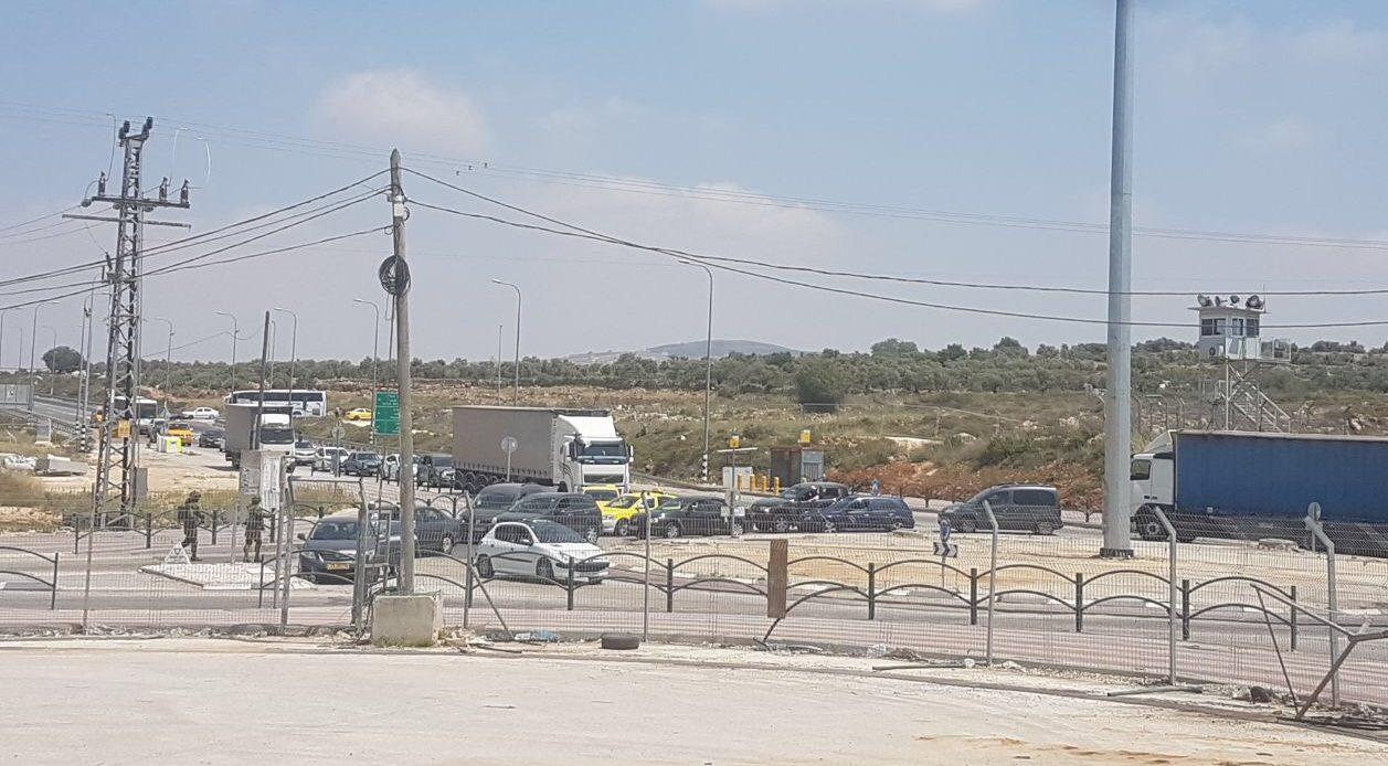 ההשתוללות הערבית בכבישי יו