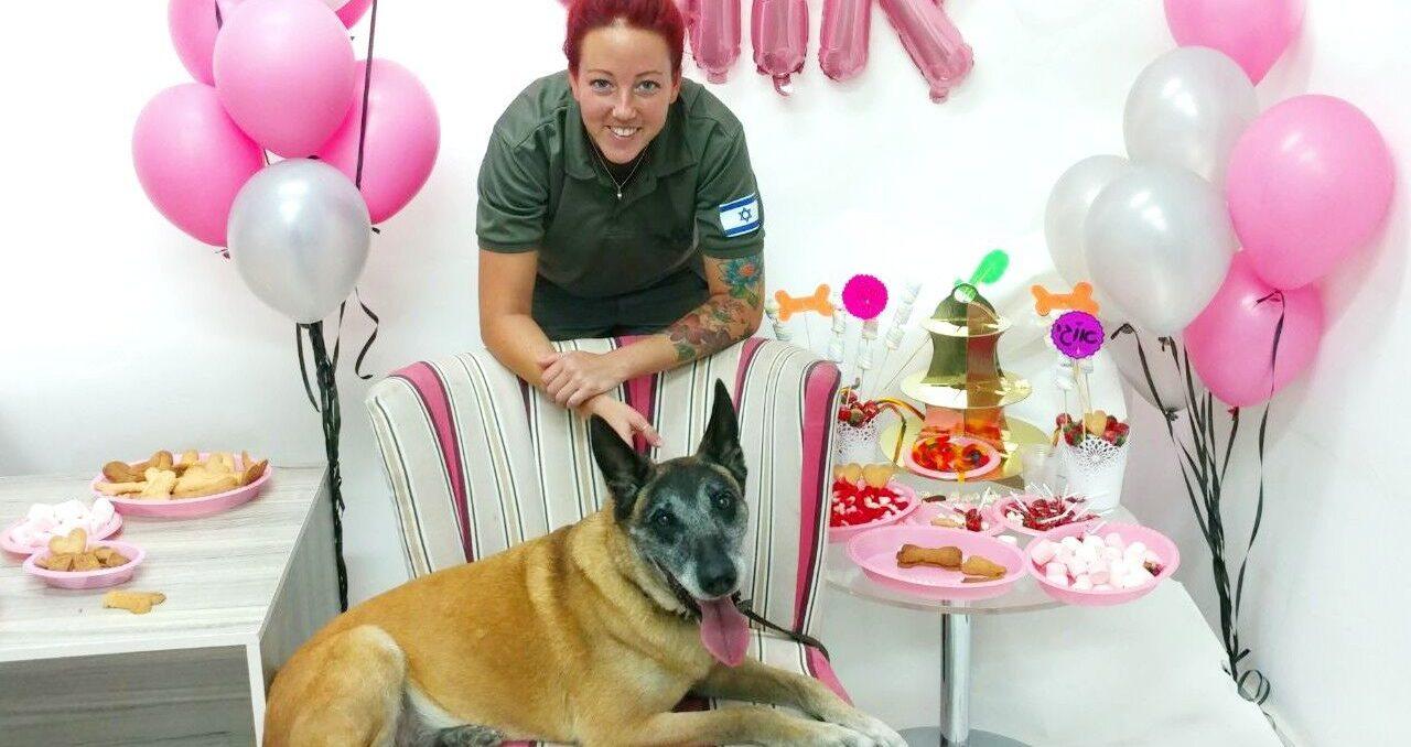 """צפו: כלבת השיטור אוגי חגגה יום הולדת 10 יחד עם הלוחמים – """"הכלבים חלק בלתי נפרד מהיחידה"""""""