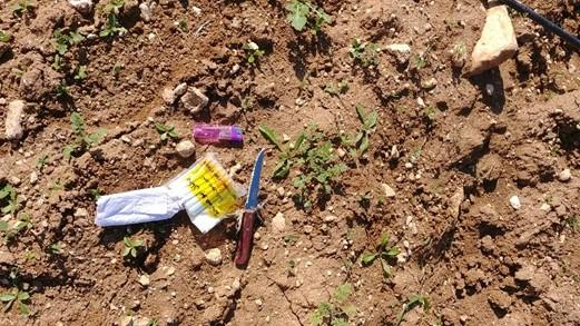 כוחותינו סיכלו פיגוע דקירה סמוך לנגוהות בהר חברון