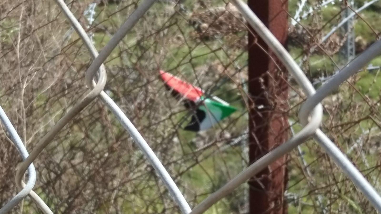 ערבים תלו את דגל הרשות על גדר הביטחון בביתר עילית