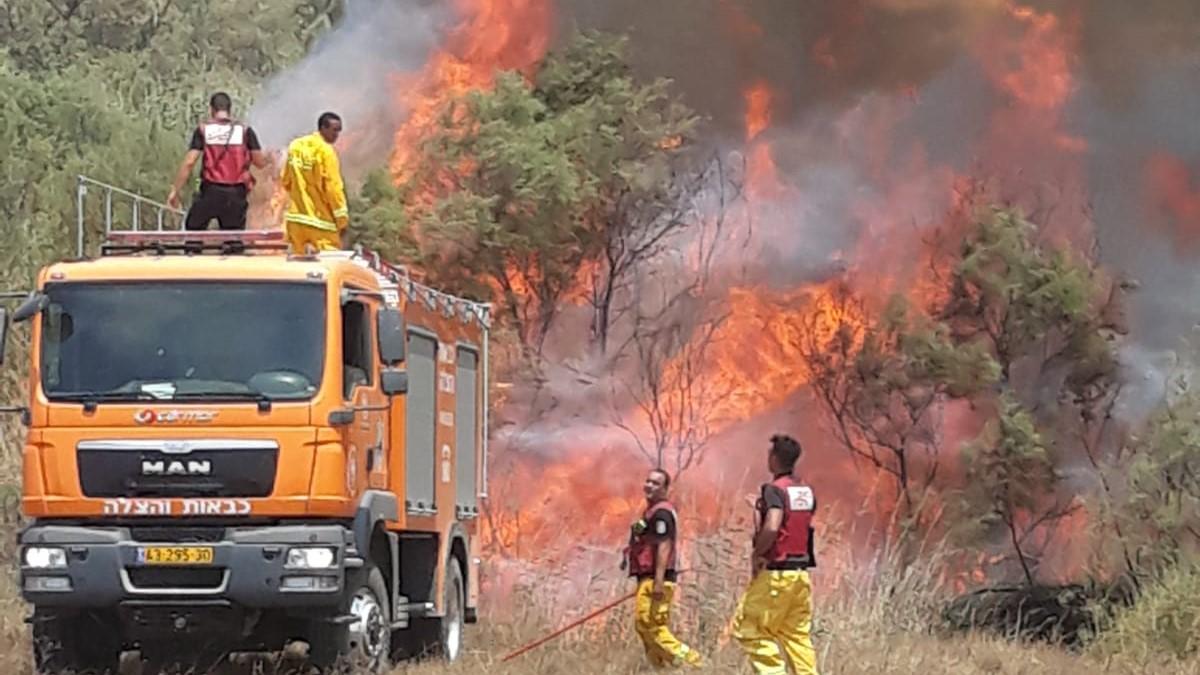 חשד להצתה: כוחות רבים הוזעקו לשריפה בשמורת הטבע בנחל הבשור