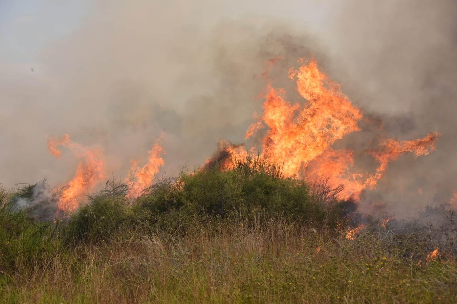 טרור העפיפונים: לוחמי האש מטפלים במספר מוקדי שריפות בעוטף