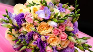 פרחים בצפון הארץ