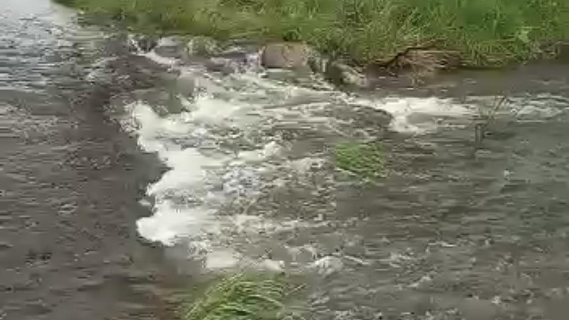 משרד הבריאות מודיע: הכניסה לנחלים אלה עלולה להיות מסוכנת
