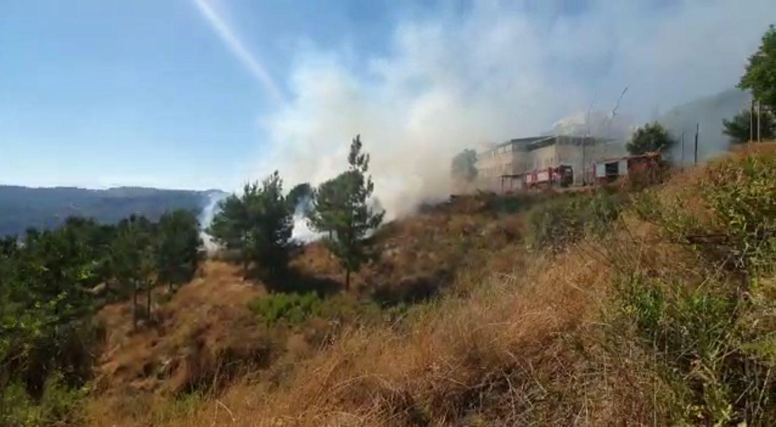 בסיוע מטוסי כיבוי, לוחמי האש השתלטו על שריפה שהשתוללה בסמוך לבתים בירושלים (צפו)