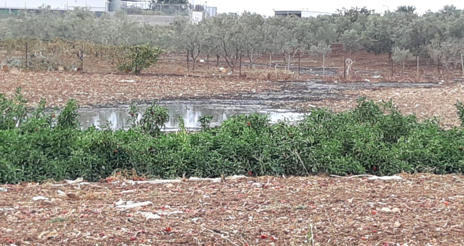 המשרד לאיכות הסביבה עצר הזרמת זיהום ממפעל בד לשטחים חקלאים בגליל המערבי | צפו