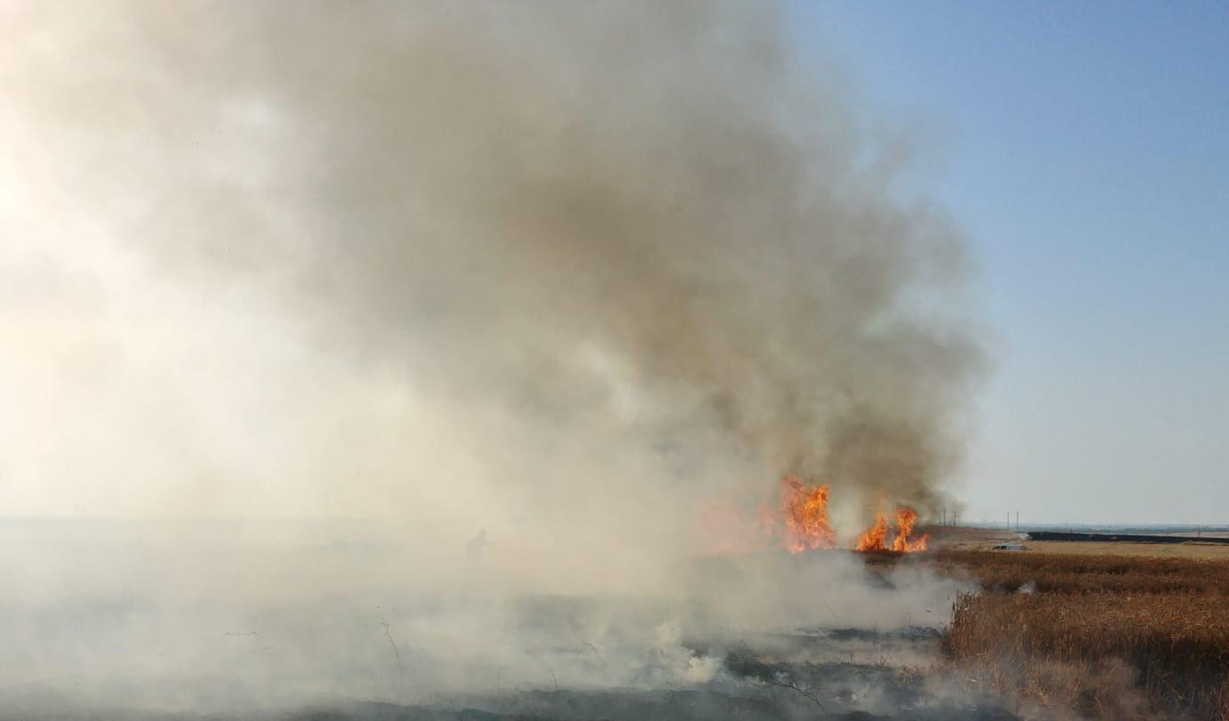 טרור הבלונים: שריפה פרצה בחממה ביישוב במועצת חוף אשקלון