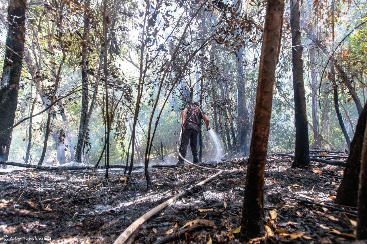 לוחמי האש מבסיסי חיל-האוויר לוקחים חלק בכיבוי השריפות בישובי העוטף
