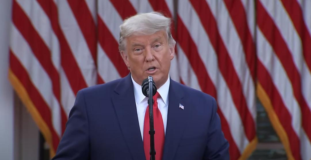 הנשיא טראמפ העניק חנינה ליועצו לשעבר מייקל פלין